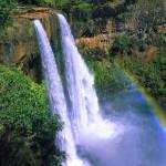 Paesaggio hawaiano