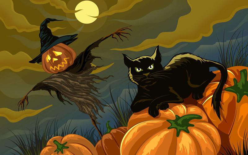 Gatto nero ad Halloween